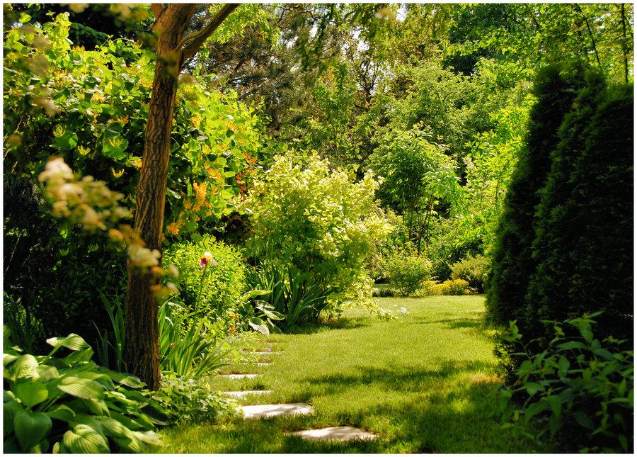 Paoooo in another world for Jardin del eden